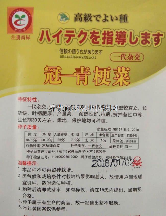 耐热油菜种子