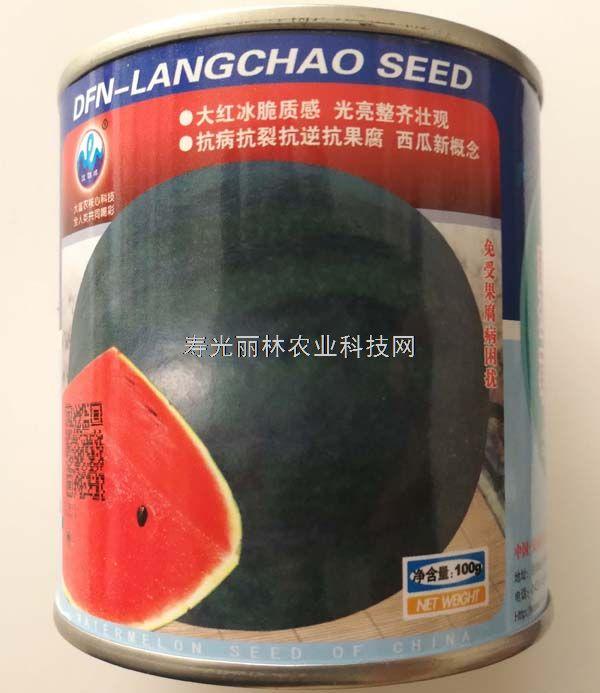 爱花二号西瓜种子-高糖超甜 皮薄耐裂 特大红瓤