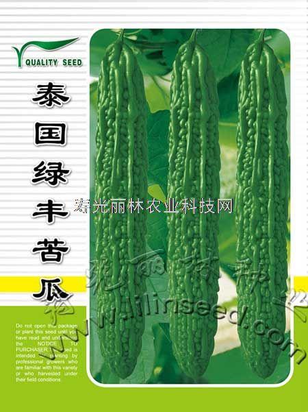 疙瘩绿苦瓜种子-泰国绿丰-寿光苦瓜种子