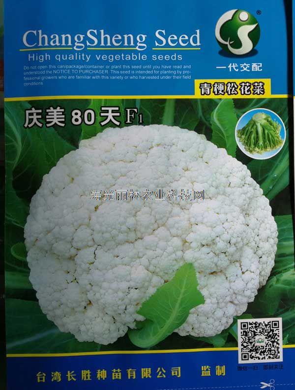 庆美80天青梗松花菜种子-进口松花菜种子-青梗松花 品质超群