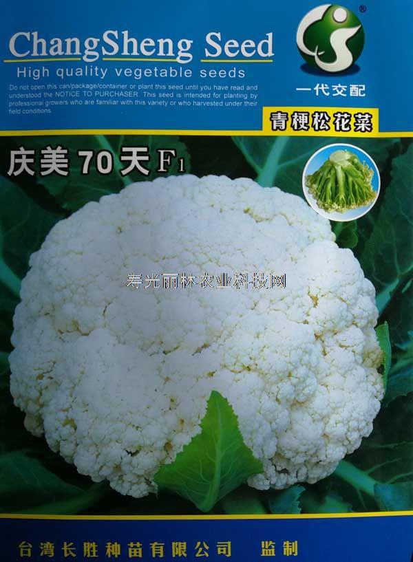台湾长胜  庆美70天青梗松花菜种子-进口松花菜种子