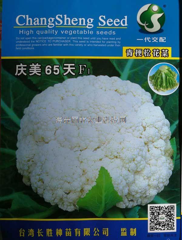 庆美65天青梗松花菜种子-台湾进口松花菜种子