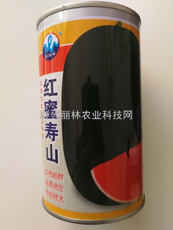 红蜜寿山西瓜种子-黑皮少籽超甜西瓜种子