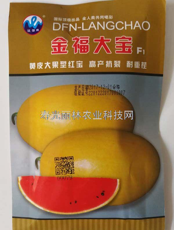 金福大宝西瓜种子-黄皮红瓤西瓜种子