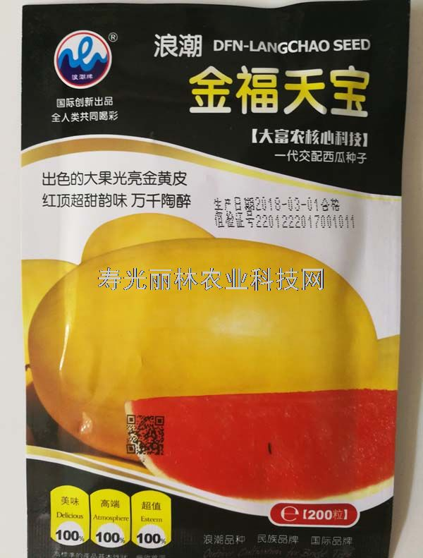 金福天宝西瓜种子-黄皮红肉西瓜种子