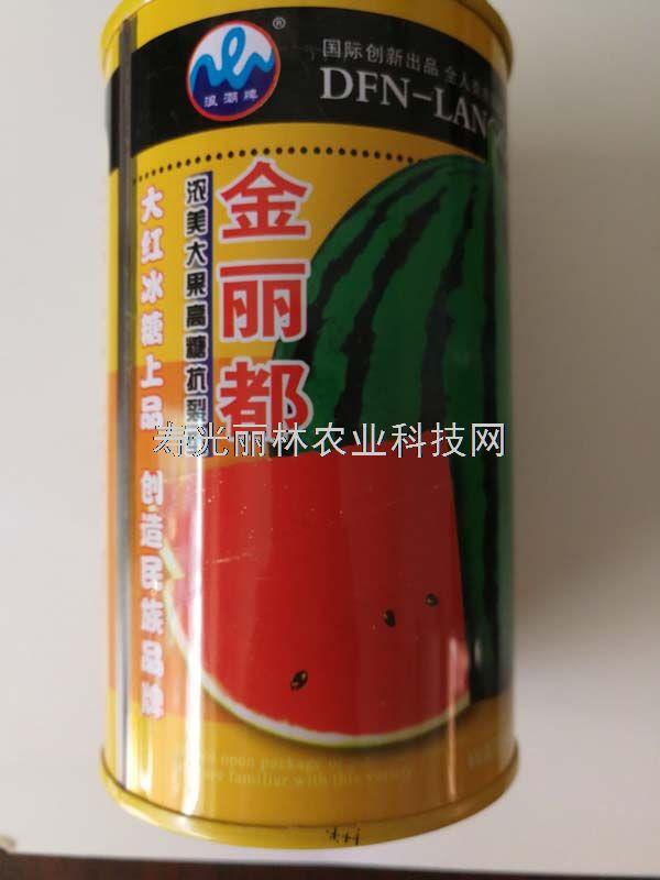 金丽都西瓜种子-高糖 皮薄耐裂 红瓤黒籽