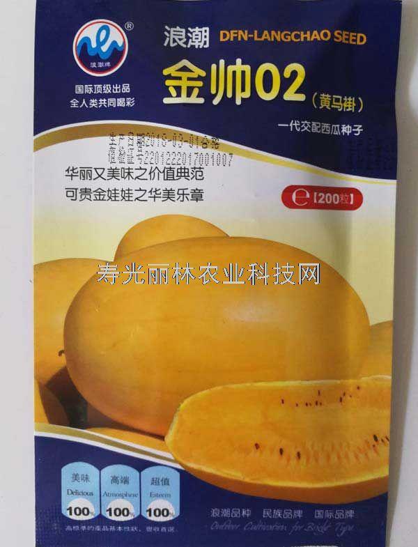 金帅02礼品西瓜种子-早熟 黄皮黄肉西瓜种子