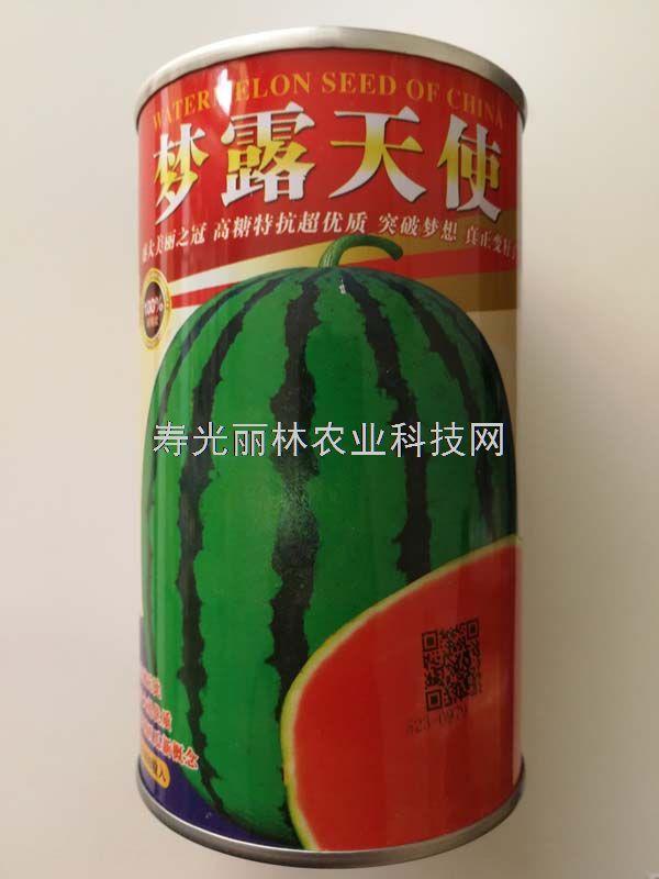 梦露天使西瓜种子-特大、高糖、黒籽、红壤