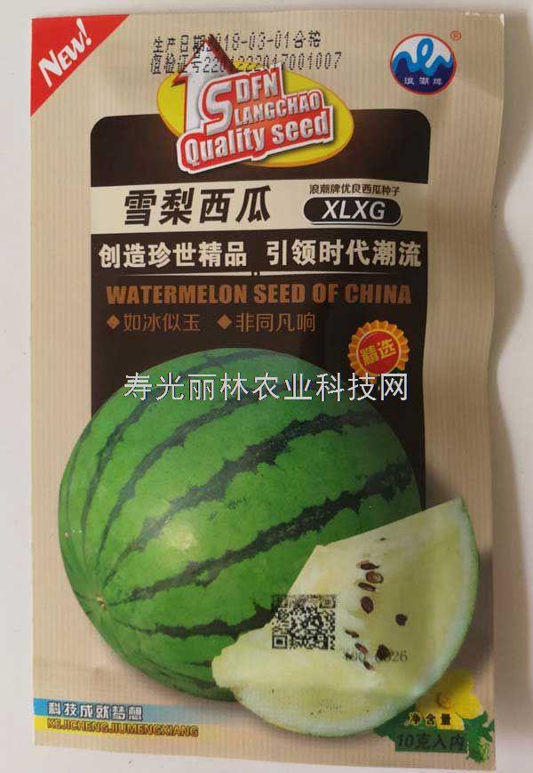 雪梨西瓜种子-早熟、球形绿皮、白肉高糖