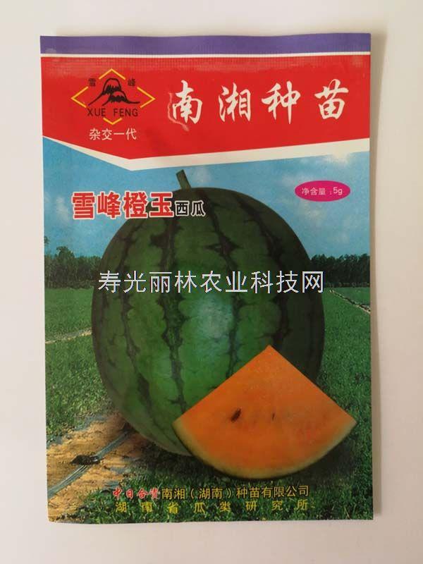 雪峰橙玉西瓜种子-橙瓤礼品西瓜种子