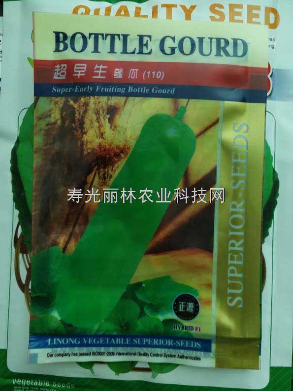 超早生瓠瓜种子-蒲瓜种子