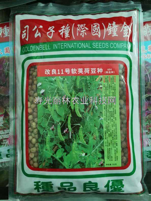 改良11号软荚荷兰豆种子