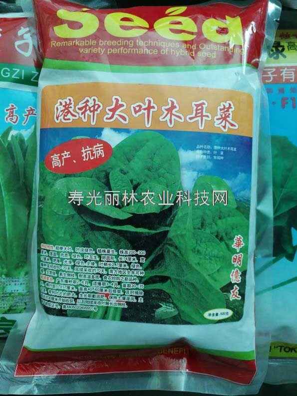 港种大叶木耳菜种子