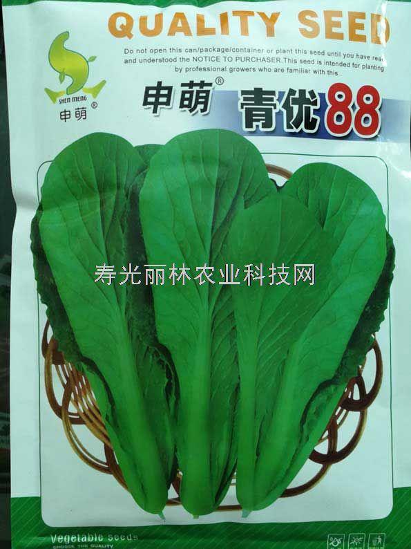 青优88小白菜种子-绿色小白菜种子