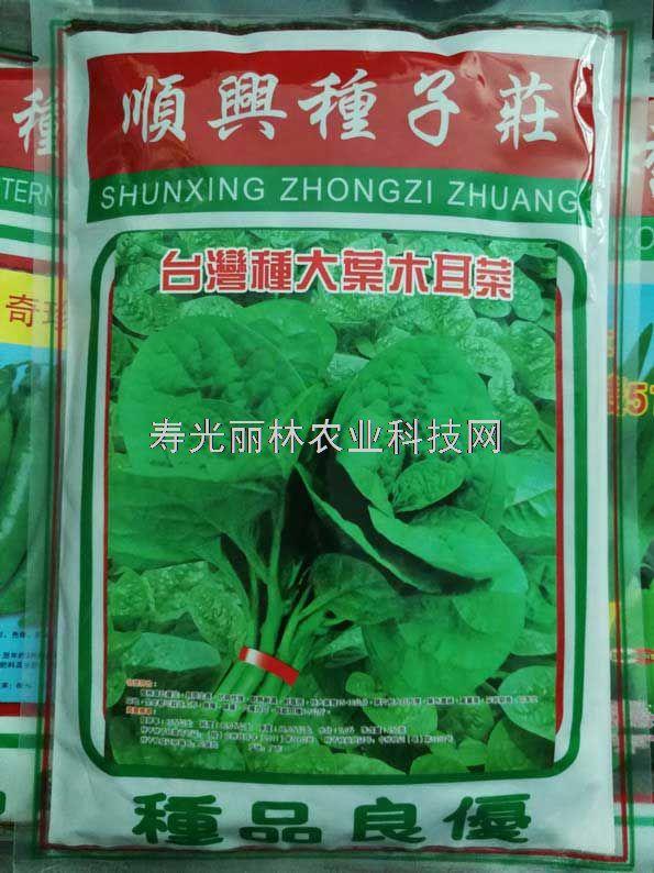 台湾大叶木耳菜种子