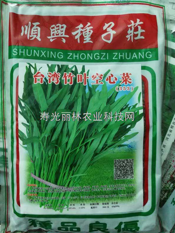 台湾竹叶空心菜种子-进口竹叶空心菜种子