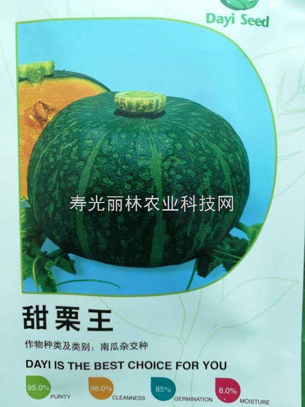 甜栗王南瓜种子-绿板栗南瓜种子