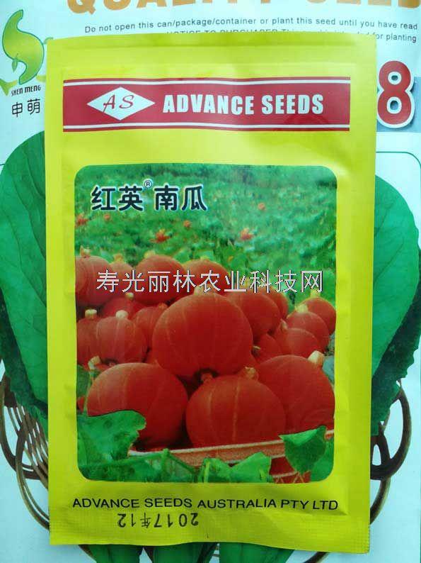 红英南瓜种子-红栗南瓜种子
