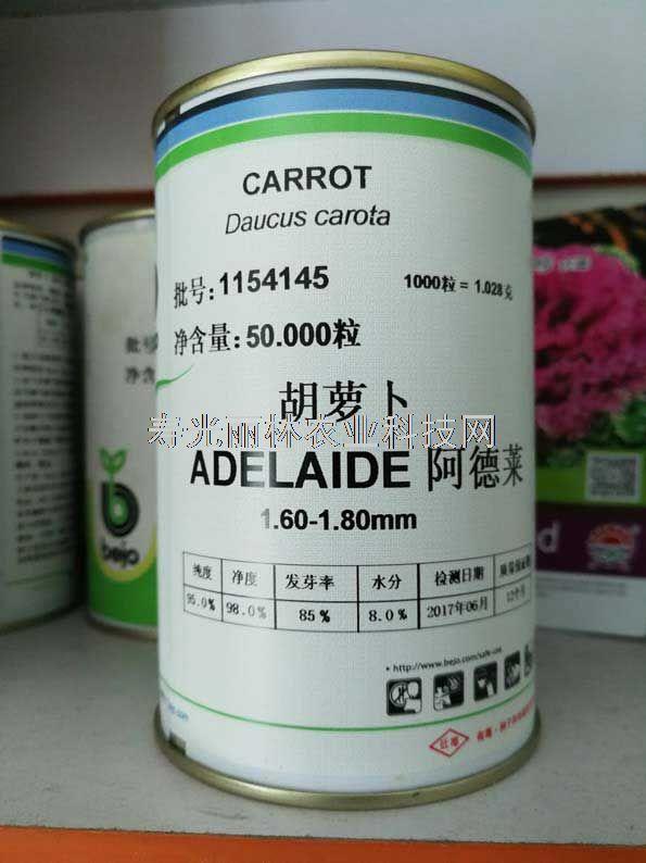 迷你胡萝卜种子-手指胡萝卜种子-拇指胡萝卜种子-荷兰比久胡萝卜种子阿德莱