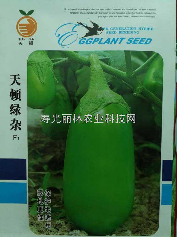 绿色灯泡茄子种子-天盾绿杂茄子种子-高产抗病