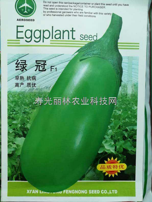 绿色灯泡茄子种子-茄罐种子-绿冠茄子种子