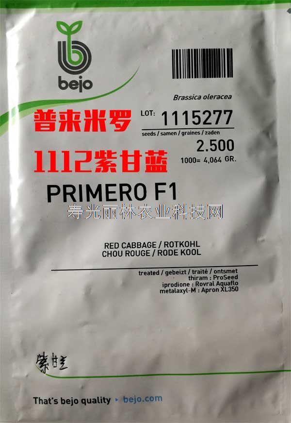 进口紫甘蓝种子-1112紫甘蓝种子-荷兰比久普来米罗紫甘蓝种子