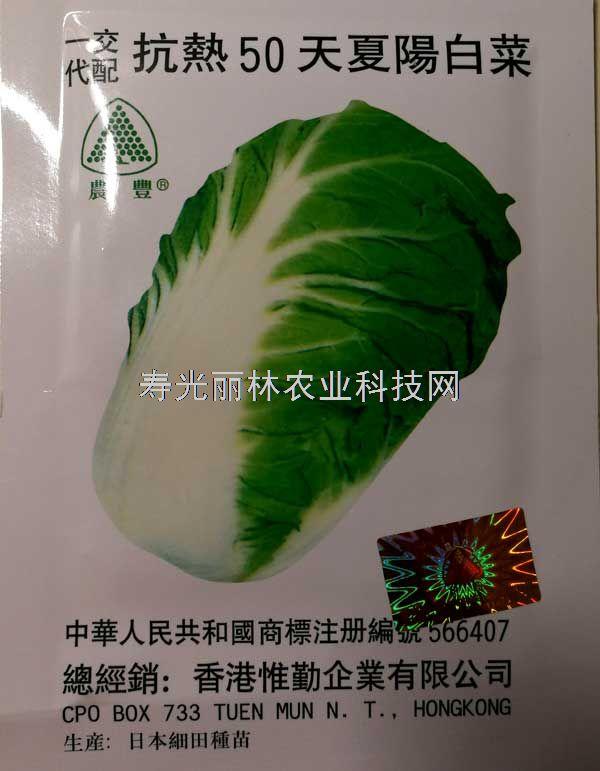进口耐热白菜种子-抗热50天夏阳白菜种子