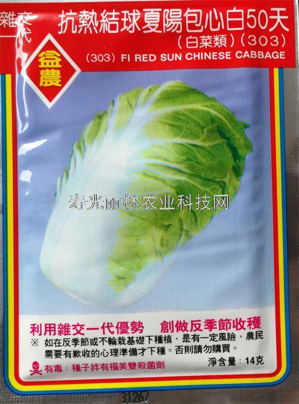 耐热白菜种子-进口白菜种子-夏阳303白菜种子