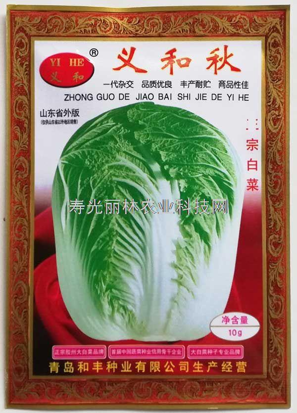 胶州大白菜种子-秋季大白菜种子-义和秋大白菜种子