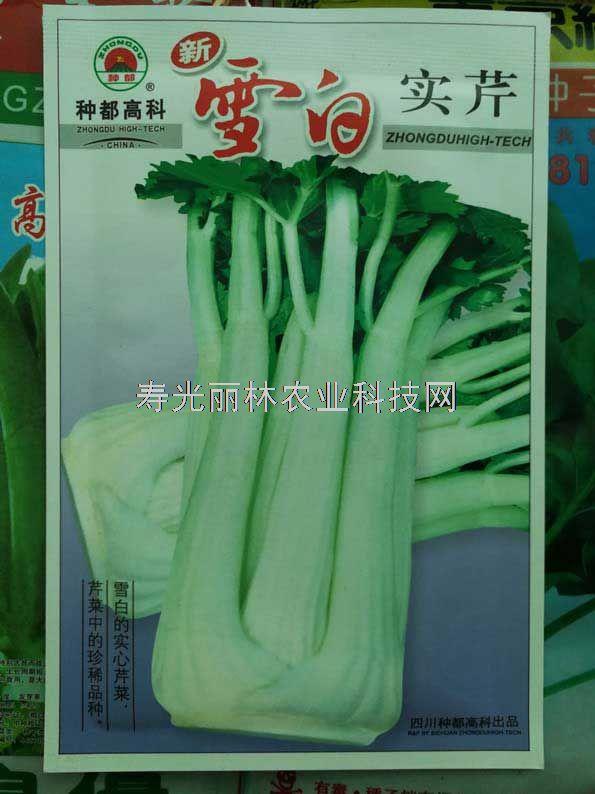 种都雪白实芹种子-白色实芹种子
