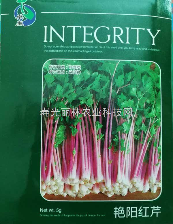 艳阳红芹种子-红色芹菜种子