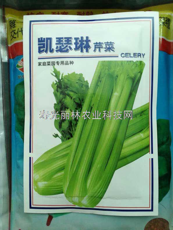 凯瑟琳芹菜种子-西芹种子