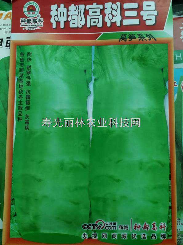 耐热耐寒莴笋种子-种都高科三号莴笋种子