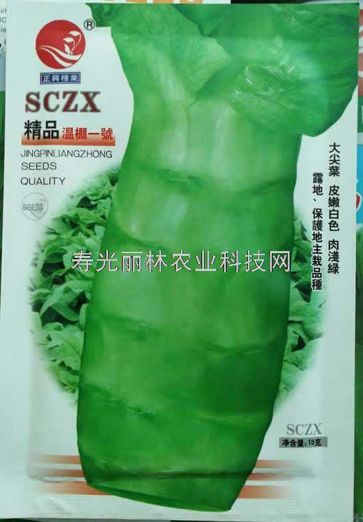 耐寒莴笋种子-尖叶莴笋种子-温棚一号莴笋种子