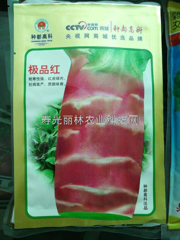 红皮莴笋种子-耐寒莴苣种子-种都极品红莴笋种子