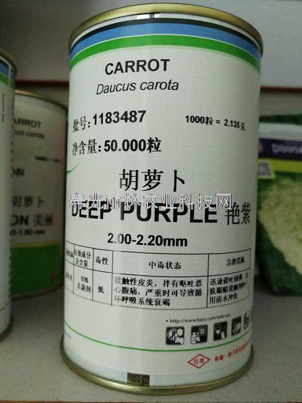 进口胡萝卜种子-紫色胡萝卜种子-荷兰比久艳紫胡萝卜种子