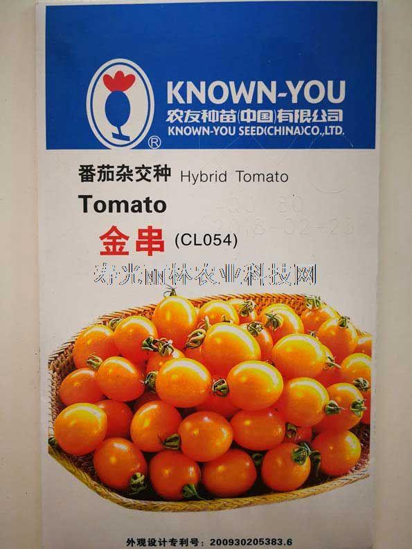 橘黄色球形小番茄种子-台湾农友金串番茄种子-口感小番茄种子