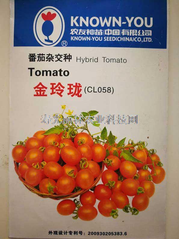 橙黄色樱桃番茄种子-台湾农友金玲珑小番茄种子-口感小番茄种子