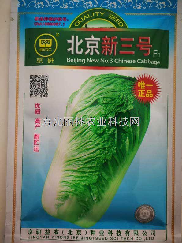 北京新三号大白菜种子-晚熟秋大白菜种子