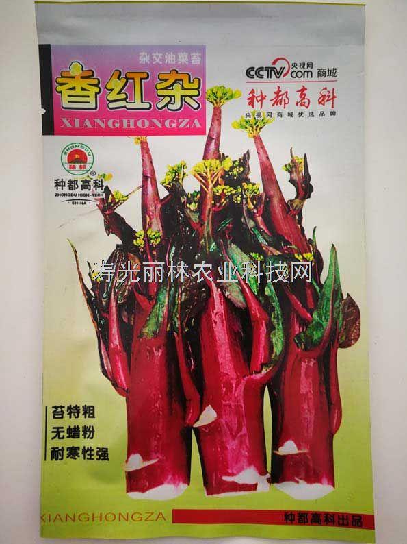 香红杂红菜苔种子-红菜心种子