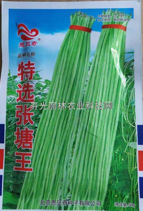 白绿条豆角种子-特选张塘王豆角种子