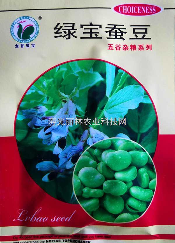 高产蚕豆种子-绿宝蚕豆种子