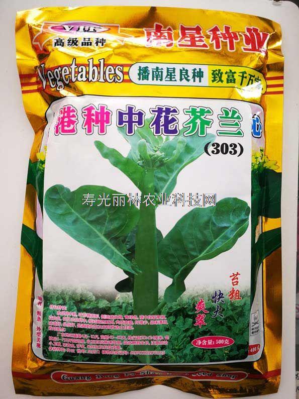耐热耐雨水芥兰种子-港种中花芥兰种子
