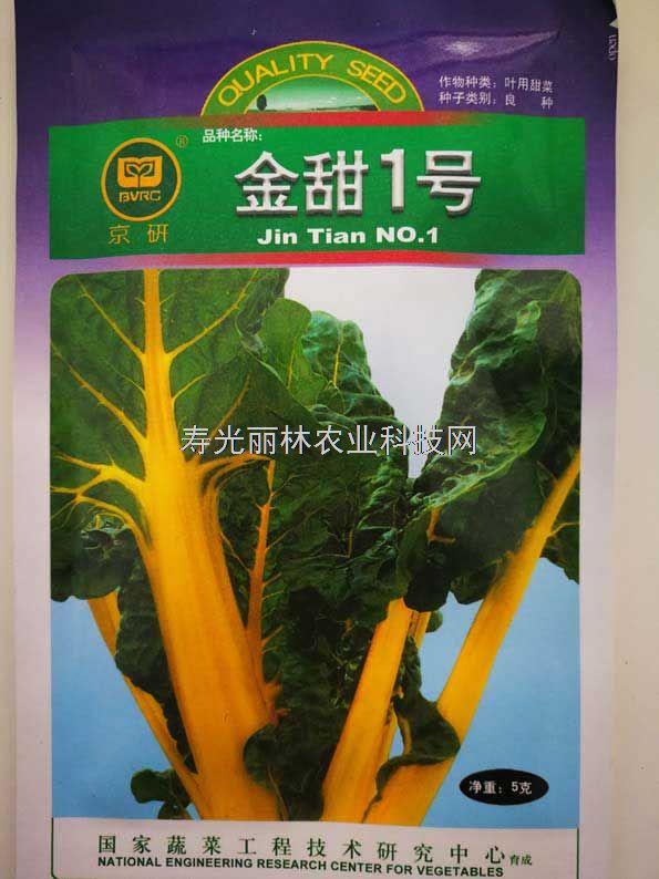 黄叶甜菜种子-金甜一号甜菜种子