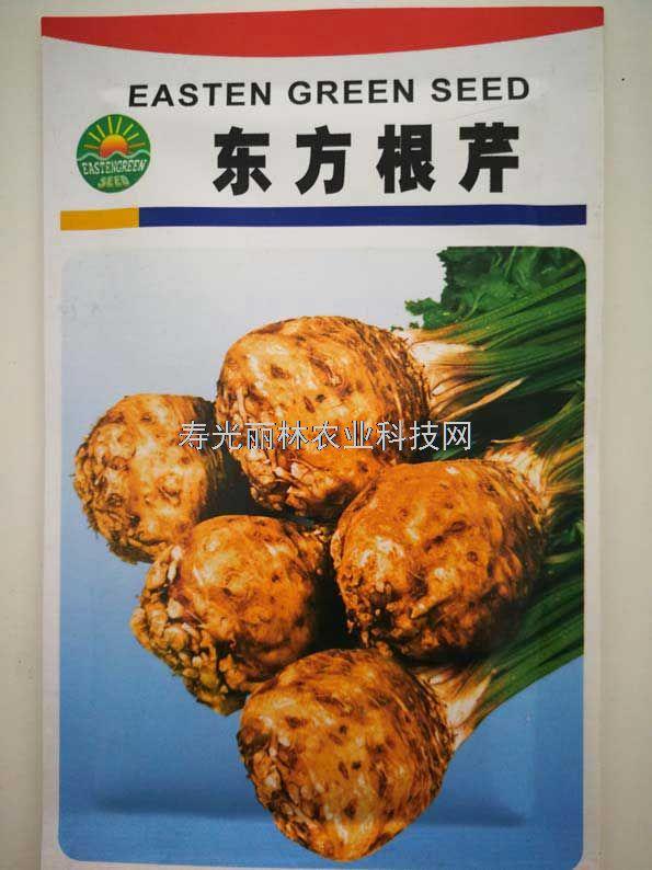 根芹种子-东方根芹种子