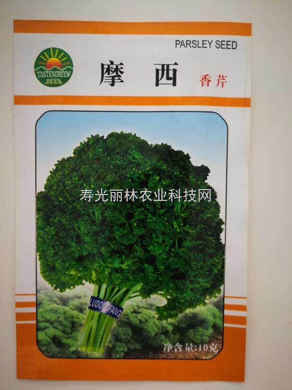 欧芹种子-莫西欧芹种子