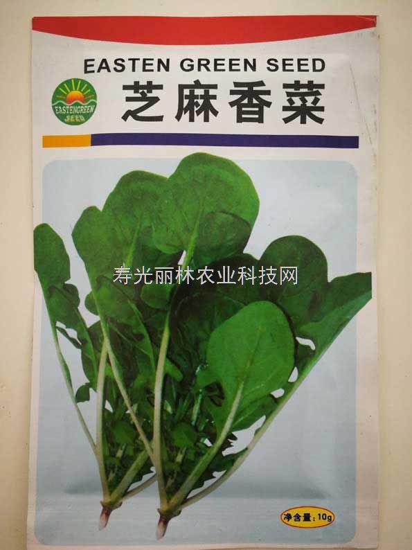 芝麻香菜种子
