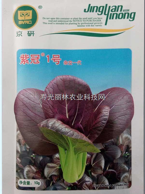 紫油菜种子-紫冠一号油菜种子