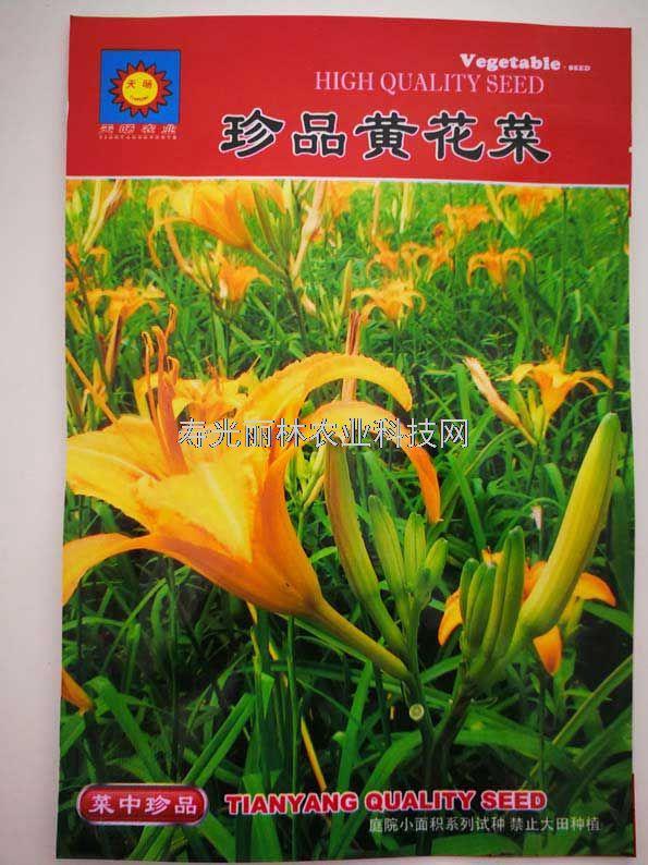 特色蔬菜种子-黄花菜种子-珍品黄花菜种子
