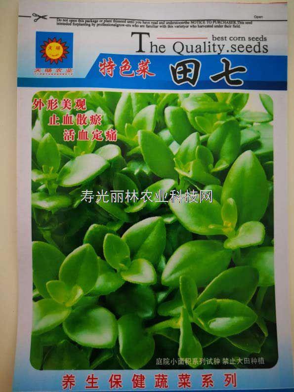 特色蔬菜种子-田七种子
